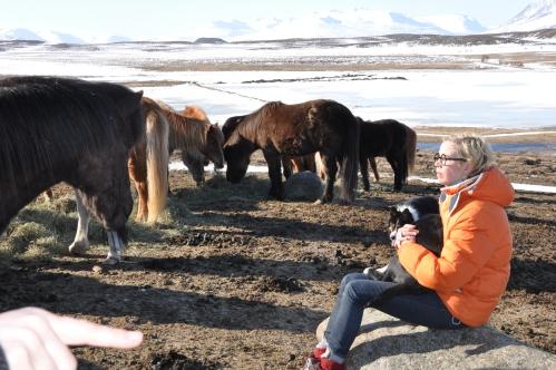 Island april 2013 098